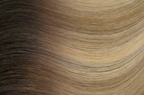 R622 Warm blonde with high & low lights