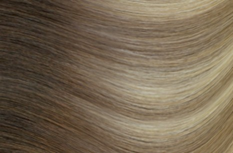 R882 Ash blonde with cool highlights