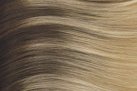 B14-24 Light warm blonde with highlights