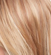 14/26S10 Light Gold Blonde & Medium Red/Gold Blonde Blend, Shaded wi/Light Brown at the Roots