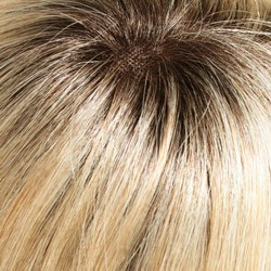 22/16S8 Light Ash Blonde & Light Natural Blonde Blend, Shaded w/ Medium Brown at Roots