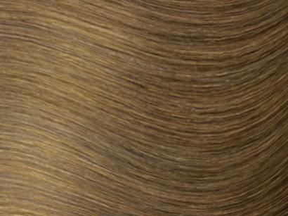 6 Lightest Brown / Darkest Blonde
